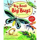 Big Book of Big Bugs: And a Few Little Ones Too... hardback