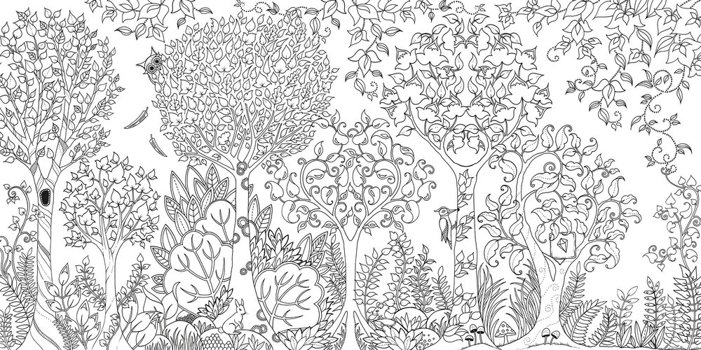 Enchanted Forest: An Inky Quest And Coloring Book Paperback - Grand Rabbits  Toys In Boulder, Colorado