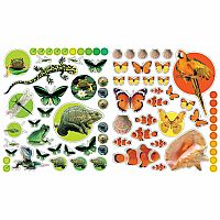 Animals Eyelike Stickers Paperback